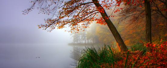 podzimni-mlha
